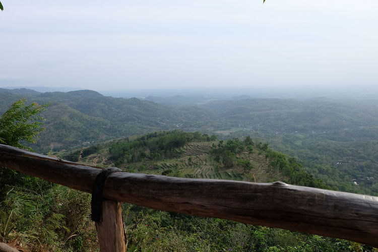 Foggy View INDONESIA Yogyakarta Beauty In Nature Day Environment Fog Foggy Forest Idyllic Land Landscape Mangunan Mountain Mountain Range Nature No People Non-urban Scene Outdoors Plant Scenics - Nature Sky Tranquil Scene Tranquility Tree View From Above