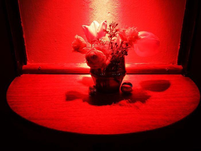 Stillllife Barlife Easter Decoration Water Red Studio Shot Close-up