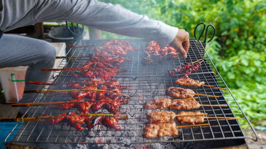 Barbecue Food And Drink Meat Food Barbecue Grill Heat - Temperature Preparation  Grilled Freshness Day One Person Human Body Part Human Hand Real People Outdoors Hand Leisure Activity Unrecognizable Person Nature Preparing Food Grilled Chicken Grilled Chicken .Thailand Food Style Smoke Cancer