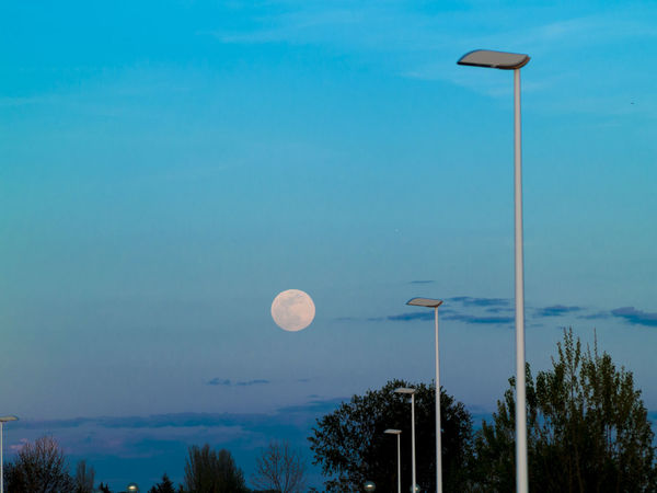 EyeEm Best Shots EyeEm Selects EyeEmNewHere Full Moon Fulmoon Moon Astronomy Beauty In Nature Blue Electricity  Electricity Pylon Environment Moon Moonlight Nature Night No People Outdoors Power Supply Rural Scene Scenics Street Light Tranquil Scene Tranquility Tree