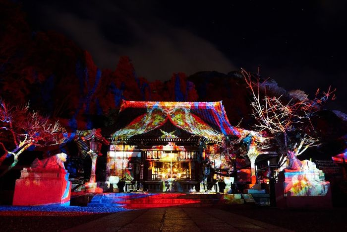Horinji Temple Temple Projection Mapping Japan Kyoto