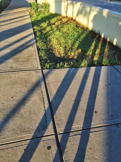 Sidewalk Concrete Angles Lines Grass Shadow Sunlight High Angle View Focus On Shadow Long Shadow - Shadow Paved