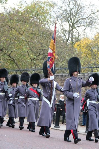 Band Guards Changing Of The Guards Changing The Guard London Changing The Guard Ceremony London Close Up Cultures Guard London Guards Details Guards Londo London LONDON❤ Men Real People Tradition