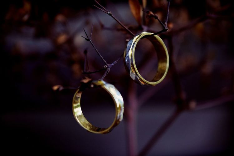 Close-up of wedding rings on plant