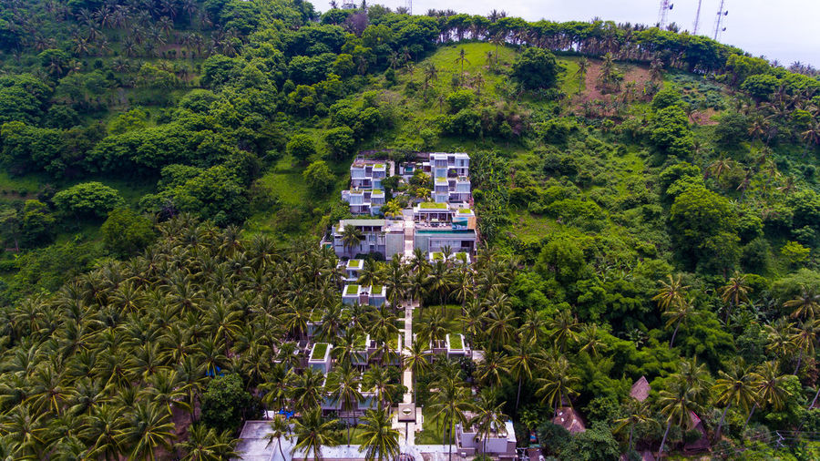 The beauty of Svarga resort on the island of Lombok. Plant Tree Architecture Building Exterior Green Color Built Structure Day High Angle View Growth Nature Foliage Lush Foliage Beauty In Nature Building Outdoors No People Land City Transportation Residential District Forest Forest Photography Hotel Resort Resort Hotel