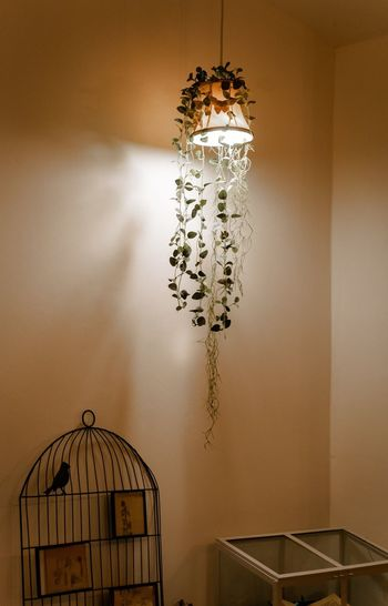 Electric lamp hanging on wall at home