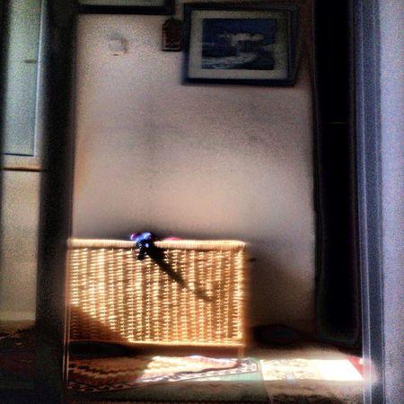 Impressionism Mobilephotography Relaxing Enjoying Life