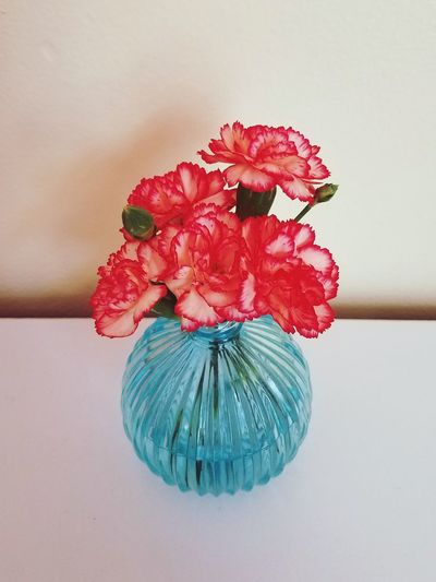 Flowers Flower Carnations No People Blue Vase Vase Round Vase Round Yellow White Green Blue Pink Red Coral Two Tone Water Small Flower Red Flower Head Petal Fragility Nature Indoors  Freshness Beauty In Nature Indoors  Studio Shot White Background