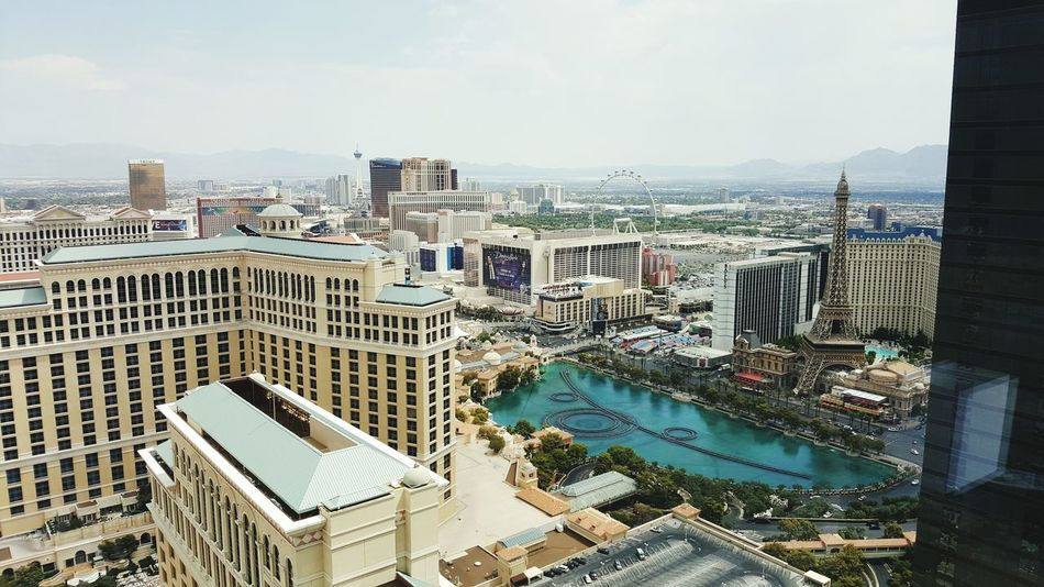 Room View Day Day Pokerlife VEGAS🎲