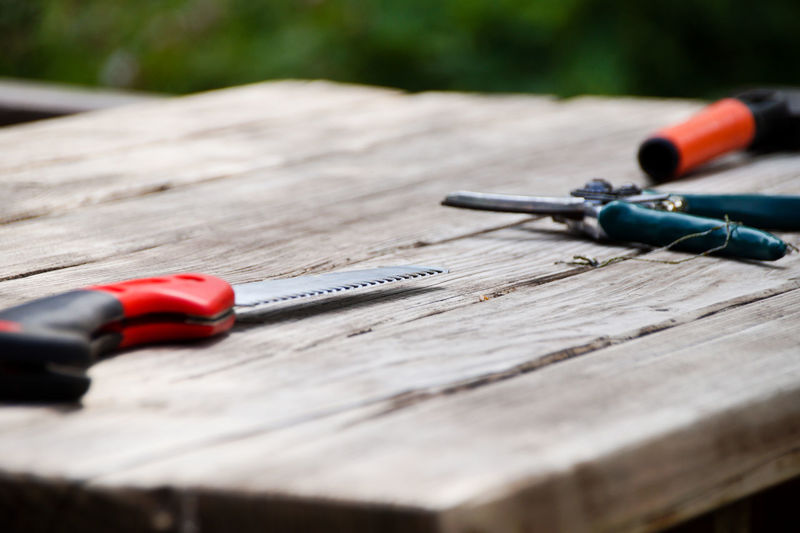 Scissors Close-up Day Equipment Focus On Foreground Garden Equipment Hand Tool Nail Nature No People Outdoors Paper Pen Personal Accessory Red Saw Selective Focus Sport Still Life Table Tool Wood Wood - Material Work Tool The Still Life Photographer - 2018 EyeEm Awards The Still Life Photographer - 2018 EyeEm Awards