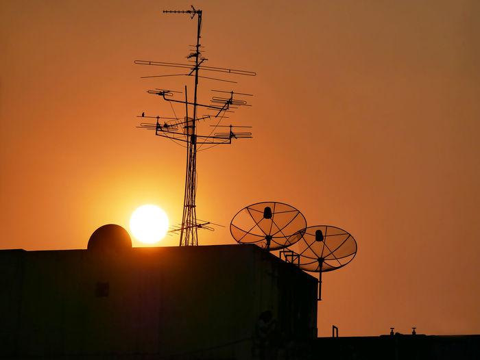 Nature Nature Photography Red Silhouette Beauty Full Cactus Evening Sun Satellite Dish Sun
