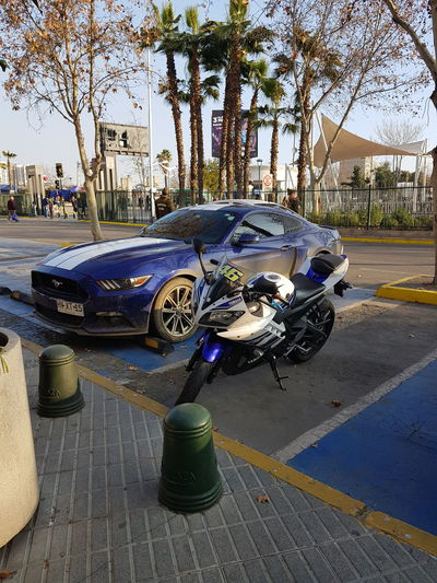Some day I'll choose one or may be bothDay Outdoors No People Tree Close-up Car Ford Mustang Yamaha R15