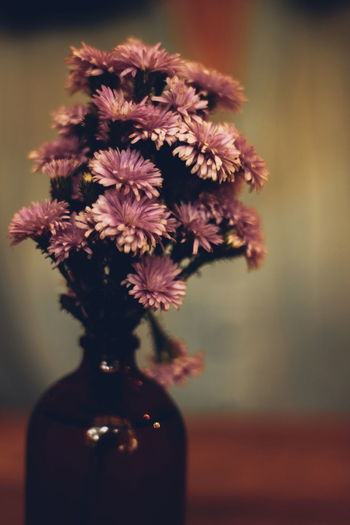 flowers in a vase Florist Purple Indoor Table Decoration Centerpiece Nature EyeEmNewHere Flower Head Flower Bouquet Perfume Vase Table Blossom Flower Arrangement Close-up Plant Bunch Of Flowers Plant Life Rhododendron Peony  Summer In The City