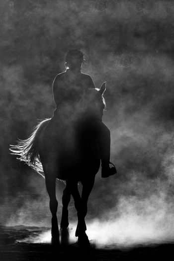 Silhouette girl riding horse on land