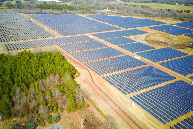 solar panels Environment Plant Rural Scene Landscape Agriculture Nature Green Color Day Field Aerial View Environmental Conservation Land Fuel And Power Generation Farm Beauty In Nature Crop  Renewable Energy Growth Alternative Energy No People Outdoors Solar Panels