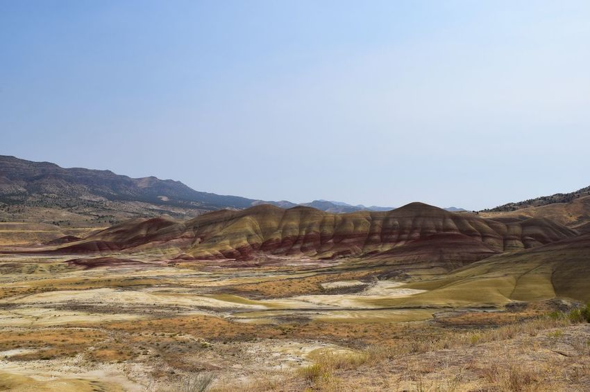 Painted hills Nature Landscape Tranquil Scene Scenics Beauty In Nature Rock Formation Mountain No People Outdoors Desert Mountain Range Travel Destinations Idyllic Blue Blooming Freshness Non-urban Scene Sky Taking Photos Colorful Painted Hills