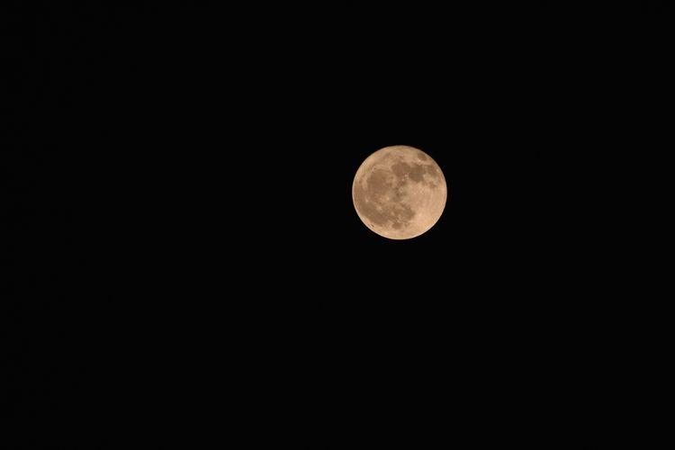 Perfect Moon @