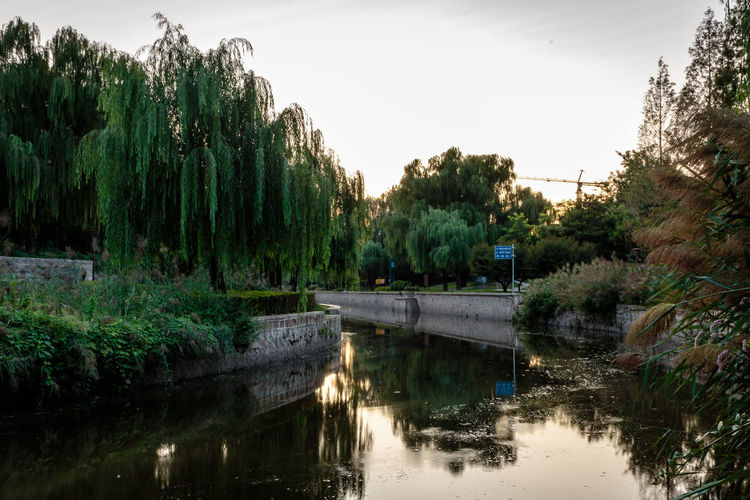 City Dynasty Reflection Sunlight Tree Wall YUAN Beauty In Nature Bridge - Man Made Structure Canal Capital Day Dusk Growth Moat Nature No People Outdoors Park River Sky Sunset Tree Water Waterfront