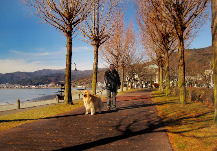 Dog Domestic Animals Japan Japan Photography Japanese  Lakeside Man And Dog Man And Dog Best Freind Outdoors
