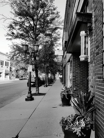 Relaxing in the Morning Empty Street Check This Out Hello World Getty & Eyeem Eyemphotography Feel The Journey No Filter Needed Photo Of The Day 2016 Travel Cafe Coffee Time Beautiful Trees North America Tourist Blackandwhite Photography