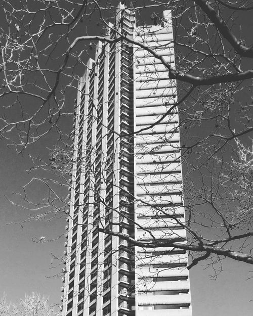The Barbican Tower Architecture Architecture Architecture_bw Architecture_collection Architecturelovers Architectureporn Black & White Black And White Blackandwhite Blackandwhite Photography Brutalism Building City yClear Sky yConcrete eLines sLondon nLondon_only yLONDON❤ ❤Low Angle View wNo People eSky yTower rTree e Here Belongs To Me
