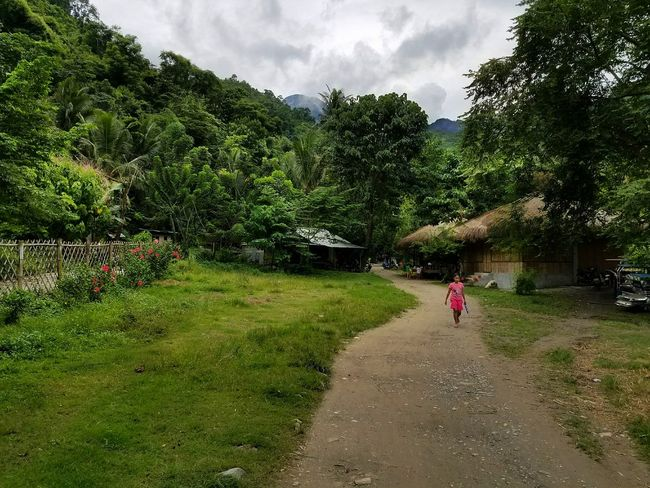 This is the entrance to the indigenous people of the Philippines on the island of Mindoro. They're called the Mangyan collectively and we had the privilege and honor of visiting them. Tree Philippinesphotography Southeastasia Cloud - Sky Vacations Travel Travel Destinations Philippines Photos Tourism Travelphotography Travel Photography EyeEmBestPics EyeEm Best Shots Tranquility Green Color Outdoors Nature Jungle Trekking Indigenous  Indigenous People