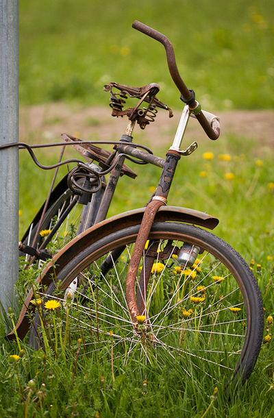 Bike Rust Old Green