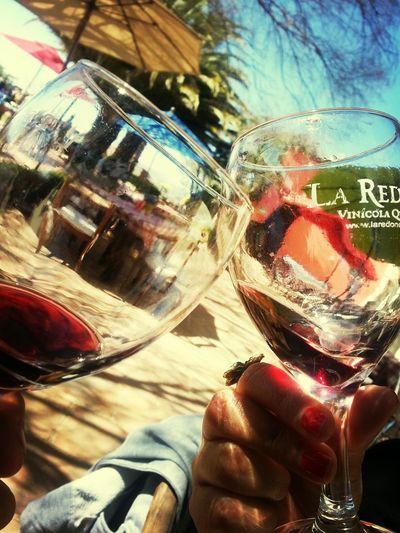 Wine Tasting Wine Viñedos Querétaro