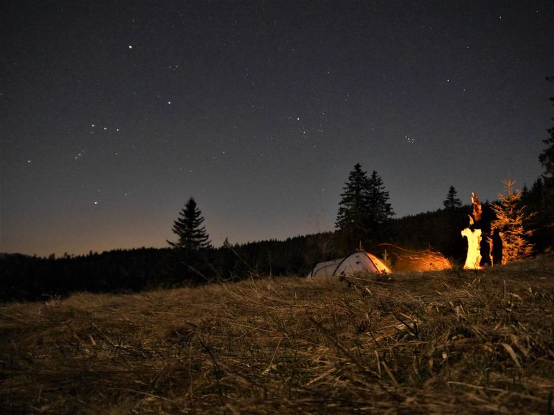#black  #blackforest #camping #fire #forest #nightshot #stars #tents #trees