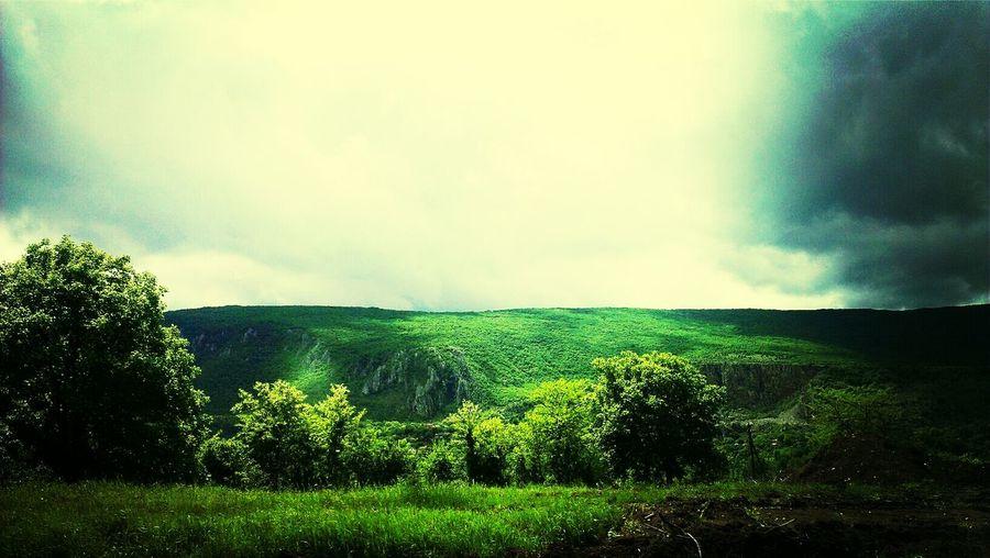 Traveling Landscape EyeEm Nature LoverThe Environmentalist – 2014 EyeEm Awards