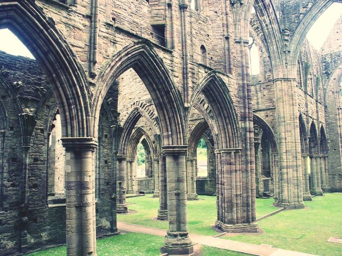 Tintern Abbey 🙌 Tintern Abbey Monastery Ruin Inside View Grass Arches Architecture History Built Structure Day Travel Destinations No People
