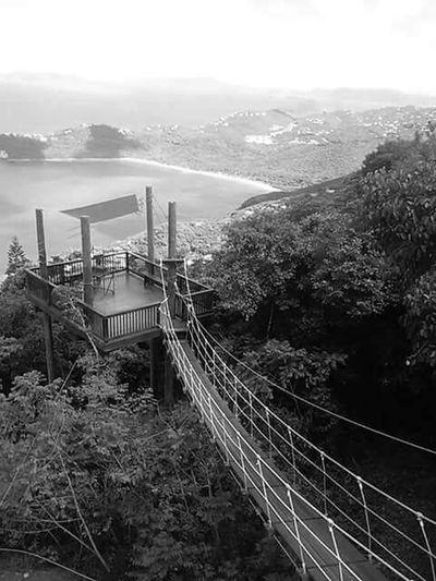 Bridge Blackandwhite Stthomas Zipline