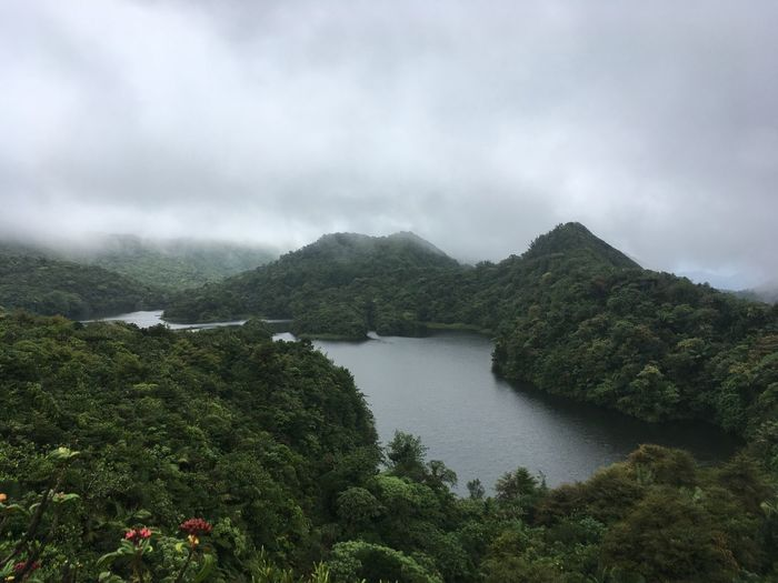 Dominica Beauty In Nature Day Forest Mountain Nature No People Outdoors River Scenics Sky Tranquil Scene Tranquility Tree Water