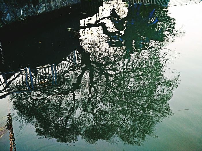 倒影 Reflection Water High Angle View Day Nature Outdoors Lake