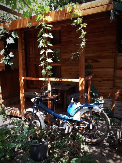 Bicycle parked by abandoned building