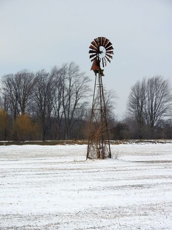 Rusty Giant ~ Bare Tree Beauty In Nature Canada Chilly Mornings Cold Temperature Day Farm Equipment Farm Life Frozen Nature No People Outdoors Rusty Rusty Metal Sky Snow Solitary Windmill Windmill Winter