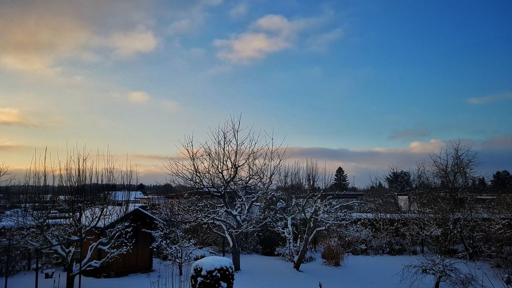 first light to day Sunset Sky No People Outdoors Tree Nature Snow Cold Temperature Beauty In Nature Day Sunrise_sunsets_aroundworld Schnee Snow Covered Have A Nice Day♥ Samsung Galaxy S7 Mobilephotography First Eyeem Photo My Picture 2017 Germany🇩🇪 Freshness Frozen Nature Winter Low Angle View Scenics