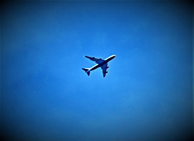 Close-up of a plane over London UK 2017 2017 2017 Year 2017 Photo City Of London England, UK Great Britain London 2017 Planes In The Sky United Kingdom Air Vehicle Airplane Blue Clear Sky Day Flying Full Length Journey Low Angle View Mid-air No People Outdoors Silhouette Sky Transportation Uk England