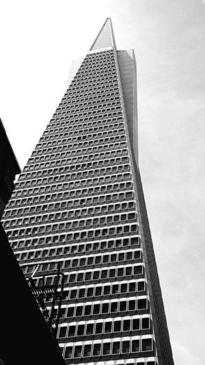 USA Urlaub Vacation California San Francisco 2015  ShotOniPhone6 Iphone 6 IPhone Schwarzweiß Blackandwhite Architecture Transamerica Pyramid Monochrome Photography