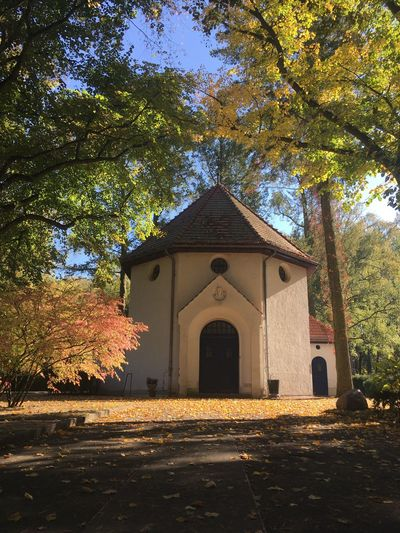 Chapel Autumn Herbst Herb Kirche Kapelle Friedhof Cementery Chapel Architecture Tree Built Structure Building Exterior Plant Nature Building Holiday Moments