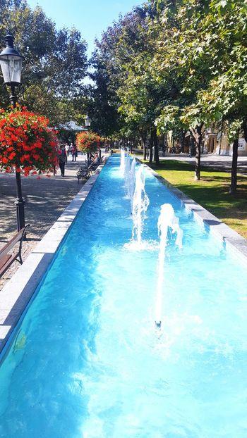 Water Swimming Pool Tree Fountain Outdoors Beauty In Nature Nature Bratislava