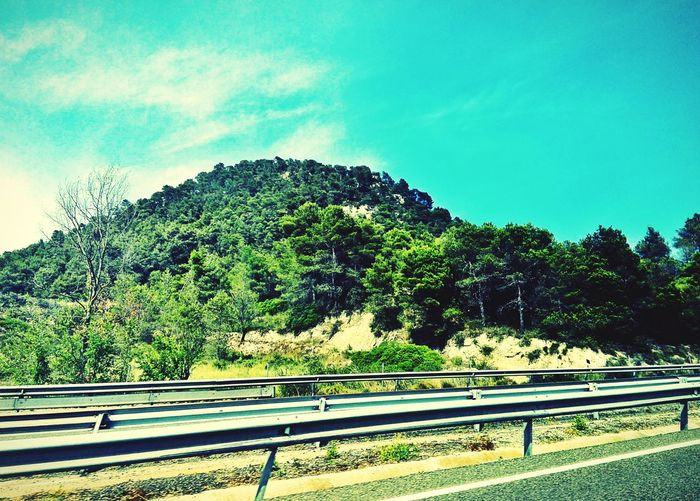 Tree Blue Sky Beauty In Nature Mountain Countryside Spain Is Different Car Trip Country Road Crash Barrier SPAIN Transportation Travel Landscape Road Trip Trip Road