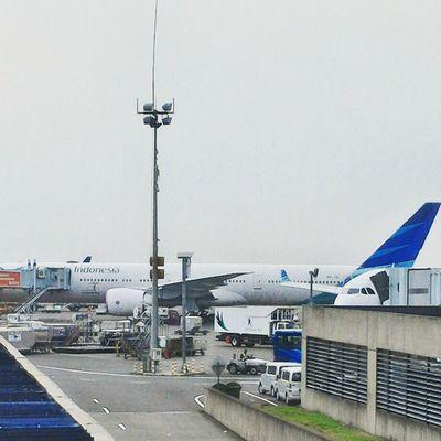 Indonesia! Pesawat Airplane Garuda Airways airlanes garudaindonesiaairways bandara airport soekarnohatta soetta cengkareng jakarta indonesia