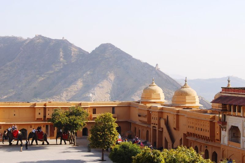 Elephants bringing tourists up to Amer Fort Building Exterior Architecture Built Structure Sky Dome Nature Plant Mountain Travel Tourism Travel Destinations History Outdoors