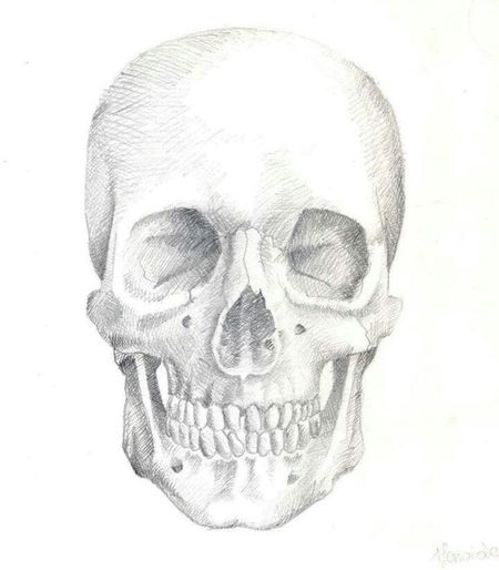 My personal happy skull Nofilternoedit Art Black & White Sketch Pencilart Draw Smile Happy Skull Anatomic