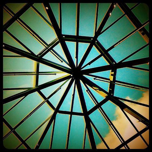 Dome Glass Dome Cabellas Domes