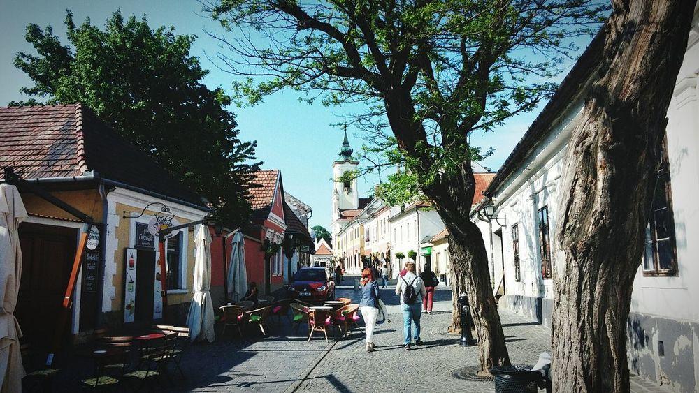 Free Hungary Jurney Travel World Forward Trees People Streetphotography Architecture Bilding