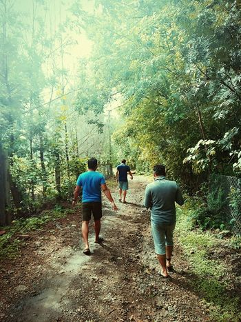 Justclick Kaushalgokarankar'sphotography Travel Photography Let's Go. Together. Nature Rear View Tree Walking Togetherness Forest Beauty In Nature Friendship