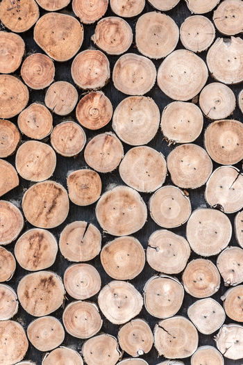 Abundance Arrangement Backgrounds Close-up Day Deforestation Environmental Issues Firewood Forestry Industry Fossil Fuel Full Frame Heap Large Group Of Objects Log Lumber Industry No People Pattern Pile Stack Textured  Timber Tree Ring Tree Trunk Wood - Material Woodpile