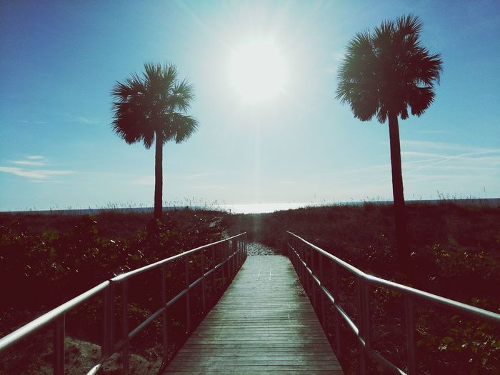 Beauty In Nature Sunlight Outdoors Railing Sky Beauty In Nature Beach Alone Time Pathway To Heaven Path To The Beach
